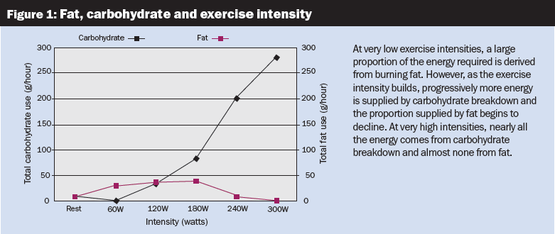 Fat, carbohydrate and exercise intensity