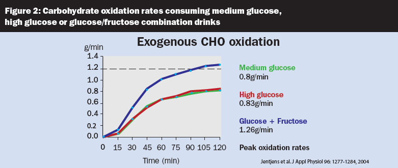 Carbohydrate oxidation rates